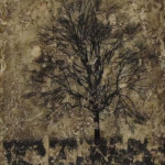 Tree Series #13